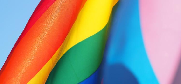 Minderjarige jongeren die homo in elkaar sloegen en regenboogvlag vernielden vrijgelaten onder voorwaarden