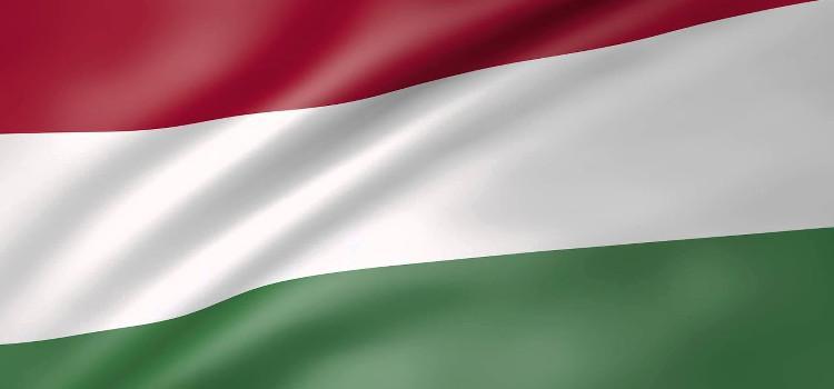 Europarlementsleden roepen Hongarije op om beruchte artikel 33 te herroepen